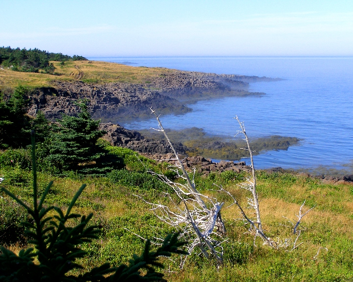 Brier_Island_Lodge-_Coastal_Hiking